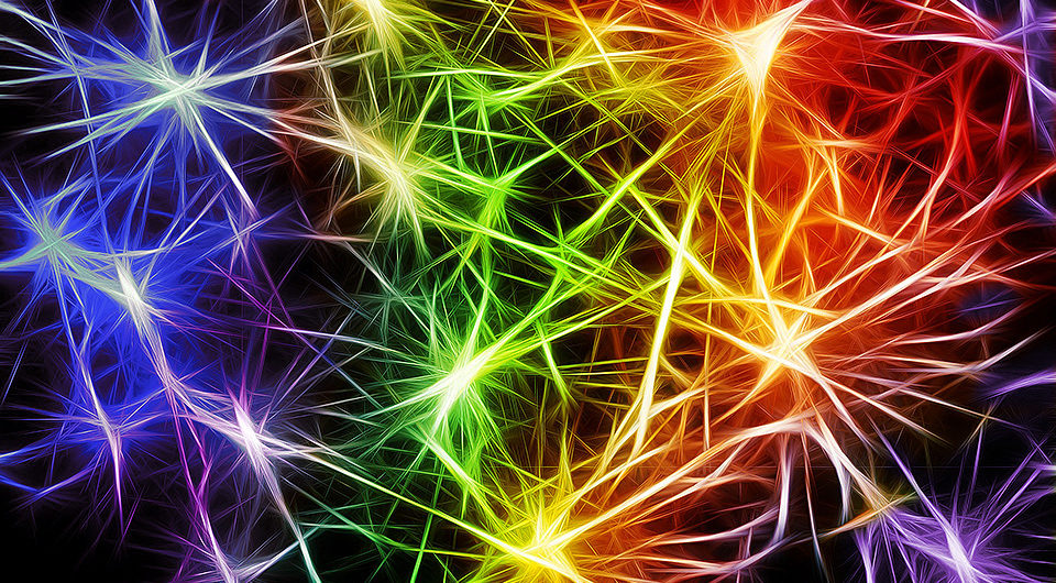 pic of colorful neurons